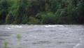 視頻湍流河流 56674044