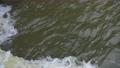 視頻湍流河流 56674199