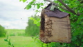 swarm of bees gathering in a wooden trap 56745395