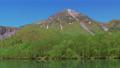 新緑の大正池 長野県上高地 56810214