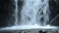 滝つぼに落ちる坂口の滝 56836402