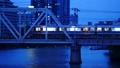 大阪環状線 淀川橋梁を渡る新型車両 56850924