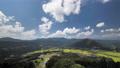 วิวฟาร์ม Tajima จากดาดฟ้าชมวิว 56860114
