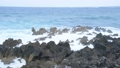 岩井崎 気仙沼 潮吹き岩 海 荒波 台風 57002652