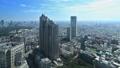 東京ランドスケイプ 新宿高層ビル街 明治神宮 タイムラプス ティルトダウン 57046445
