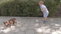 Boy is playing with a cat 57152279