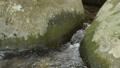 岩の間を流れる奥十曽渓谷の沢 57175119