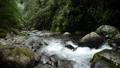 奥十曽渓谷の渓流 57175123
