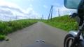 風車の回る高原をサイドカーでドライブ 57251614
