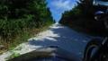白い貝殻の道をサイドカーでドライブ 57251652