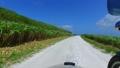 白い貝殻の道をサイドカーでドライブ 57251657