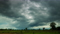 Dark rain clouds moving in the sky over the paddy field 57434259