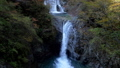 秋の西沢渓谷・七ツ釜五段の滝(チルトダウン) 58104793
