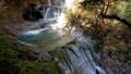 秋の西沢渓谷・七ツ釜五段の滝(チルトダウン) 58136987