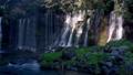 富士宮市の白糸の滝(世界遺産富士山の構成遺産)(パンニング) 58137236