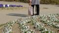 花畑と通行人 歩行者 公園 散歩 ウォーキング 58451615