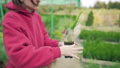 The owner of a local eco-business plants a small green plant in a pot. Seedling Farm, Outdoor 58716802