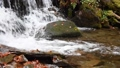 Close-up of a waterfall in a autumn forest 58741182