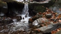Close-up of a waterfall in a autumn forest 58741184