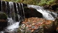 Close-up of a waterfall in a autumn forest 58741187