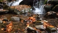 Close-up of a waterfall in a autumn forest 58741188