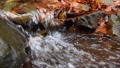 Close-up of a waterfall in a autumn forest 58741193
