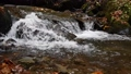 Close-up of a waterfall in a autumn forest 58741197