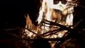 篝火,篝火,篝火,木材 58741663