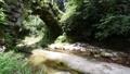 이시카와 현 滝케原 도시 아치 석교 군 동쪽 하시모토 시냇물 소리 58797331