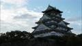 大阪城 夜明け タイムラプス 58936543