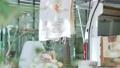 东京风景名胜区东京市景丸之内4K对应 58957832