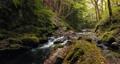 長野県辰野町 国天然記念物 横川渓谷 蛇石 音有 58994737