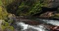 長野県辰野町 国天然記念物 横川渓谷 蛇石 音有 58994739