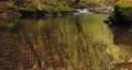 長野県辰野町 国天然記念物 横川渓谷 蛇石 音有 58994741