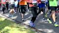 마라톤 대회 (고정 촬영) 59000984
