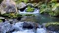 王滝渓谷 59388237
