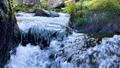 王滝渓谷 スローモーション 59388239