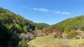 王滝渓谷 59449206