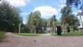 フィンランドにある森の様子 59507665