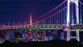 タイムラプス お台場 レインボーブリッジ 東京タワー 4k 東京湾 都心 夜景 東京 道路 高層ビル 59610820