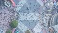 タイムラプス 渋谷スカイ 新宿 渋谷 夜空 都心 渋谷スクランブスクエア 4k スクランブル交差点 59625164