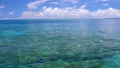 西表島の海 59796534