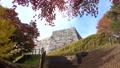 モミジ・秋の霞ヶ城公園(福島県・二本松市) 59847096