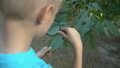 Young botanist looking through magnifying glass at 59857731