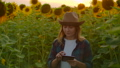 Girl works on the field with sunflowers 60075728