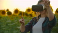 The female girl is working in VR glasses at sunset 60075732