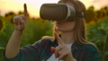 The female uses VR glasses on the sunflower field 60075755