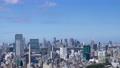 東京 タイムラプス 新宿 渋谷 都心全景 地平線 Fix 60083578