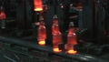 Plant for the production of bottles, glass plant 60347485