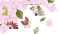 循环播放扇形和花瓣盛开的樱花盛开的素材视频 60662126